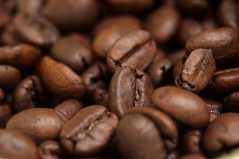 5. díl - Káva a zdraví